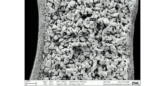 SEM of membrane on carrier wall.jpg
